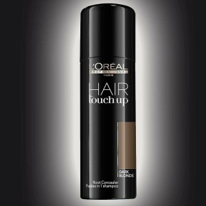 loreal-professionnel-hair-touch-up
